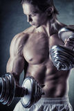 Мышечный человек стоковая фотография rf