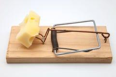 Мышеловка с сыром стоковое изображение