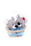 мыши влюбленныеся корзиной Стоковая Фотография RF