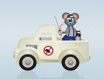 Мыши Disinfestation Стоковое Изображение RF