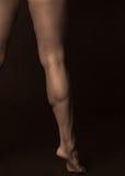 мышца мужчины икры Стоковые Фотографии RF