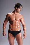 мышца человека сводок Стоковые Фото