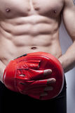 мышца s человека гимнастики тела стоковое фото