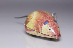 Мышь ветра-вверх Стоковые Изображения RF