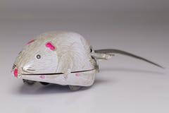 Мышь ветра-вверх Стоковая Фотография