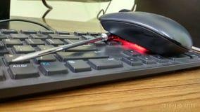 мышь клавиатуры компьютера стоковая фотография rf