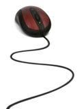 мышь компьютера кабеля Стоковое Изображение RF