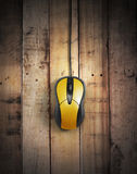 Мышь компьютера, Стоковые Фото