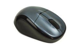 Мышь компьютера Стоковые Фотографии RF