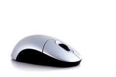 мышь компьютера Стоковые Фото