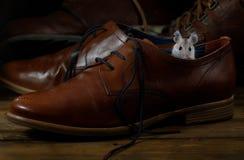 Мышь конца-вверх молодая сидит в кожаном коричневом ботинке на деревянных полах стоковое фото