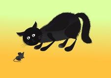 мышь кота Стоковое фото RF