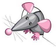 Мышь смотрит из отверстия Стоковые Изображения RF