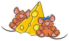 Мышь 2 спать около части сыра Стоковая Фотография
