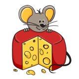 мышь сыра Стоковое Изображение