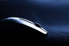 Мышь с колесом стоковое фото rf