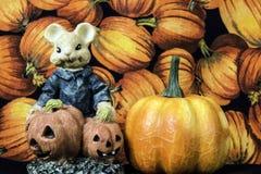 Мышь хеллоуина Стоковые Фотографии RF