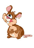 мышь Стоковые Изображения RF