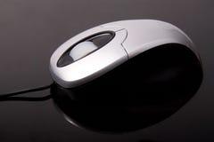 мышь стоковое фото
