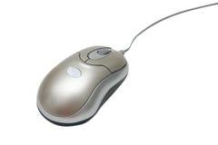 мышь стоковая фотография rf