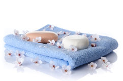Мыла на полотенце Стоковые Изображения RF