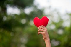 Мы в наших руках Ждать кто-то для того чтобы находиться в влюбленности стоковое фото rf