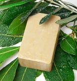 Мыло и лавр Халеба стоковые фото