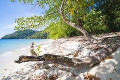 МЬЯНМА - 11-ОЕ ЯНВАРЯ 2016: Остров Fook животиков остров красивый Стоковые Изображения RF