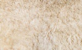 Мягкая белая текстура предпосылки меха для материала мебели Стоковое фото RF