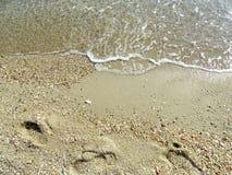Мягкая волна моря на пляже песка для предпосылки Стоковые Фото