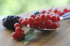 Мягкие плодоовощи Стоковая Фотография RF