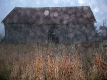 Мягкий амбар вне--фокуса с влиянием Bokeh Стоковое Фото