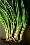Мягкий свет свежего лука весны на бакборте Вегетарианская еда, Стоковые Фото