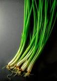 Мягкий свет свежего лука весны на бакборте Вегетарианская еда, Стоковое Фото