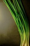 Мягкий свет свежего лука весны на бакборте Вегетарианская еда, Стоковая Фотография