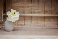 Мягкое домашнее оформление, ваза с белым небольшим цветком на белой винтажной деревянной предпосылке стены и на деревянной полке  стоковые изображения