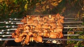 Мясо барбекю на гриле акции видеоматериалы