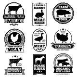 Мясо животноводческой фермы винтажное, логотипы вектора мясной лавки, значки, ярлыки иллюстрация штока