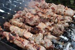 Мясо зажаренное в духовке на протыкальниках стоковые изображения rf