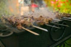 Мясо зажаренное в духовке на огне стоковое изображение rf