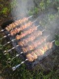 Мясо, зажаренное в духовке на огне Стоковые Изображения