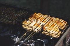 Мясо зажарено в духовке на решетке стоковые фотографии rf