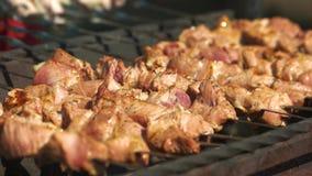 Мясо зажарено на протыкальниках на гриле сток-видео