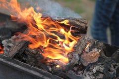 Мясо кашевара на протыкальниках Повороты руки человека зажарили мясо на mangal Варить еду пикника Стоковое Фото