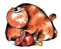 мясо кота Стоковое Изображение RF
