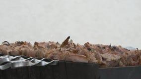 Мясо на протыкальниках на гриле Потеки соуса на kebab Кладет вне огонь и угли водой видеоматериал