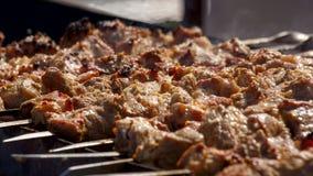 Мясо на протыкальниках Стоковые Фото