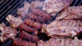 Мясо на решетке сток-видео