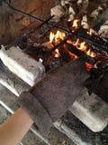 Мясо на углях Стоковые Изображения