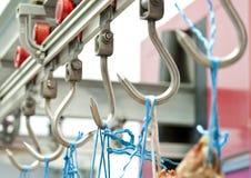 мясо рынка веек Стоковое Изображение RF